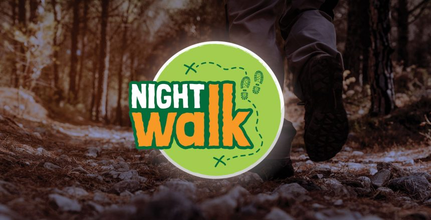 first-step-wild-night-walk